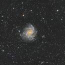 Fireworks NGC6946 - fisrt light from 250 Newton,                                Arnaud Peel