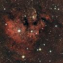 NGC 7822 EN in Cepheus,                                Hans-Friedrich Troegeler