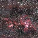 The Statue of Liberty Nebula - NGC 3576,                                Samuel Müller