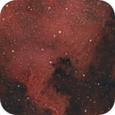 NGC 7000 North America Nebula,                                Angelillo