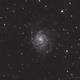 M101 Whirlpool Galaxy,                                Richard White