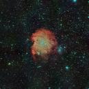 Nebulosa Cabeza de Mono (Monkey head nebula) - NGC 2174,                                Alfredo Beltrán