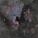 NGC 7000,                                Stephan Schäfer