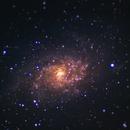 Triangulum Galaxy, unguided.,                                CosmicCricket