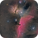 Alnitak area with B33 - IC434 - NGC2023 - NGC2024 - IC432 in HRGB,                                Jean-François Douroux