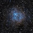 NGC2244 - Rosette Nebula,                                Sergei Sankov