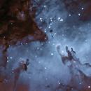 A Red Eagle,                                north.stargazer