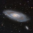 M106 Galaxy in Canis Venatici,                                Mark Wetzel