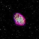The Crab Nebula,                                dts350z