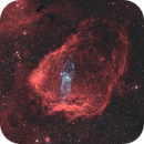 Flying Bat and Squid - Sh2-129 and OU4 - Bicolor Narrowband,                                Nico Carver