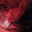 Fox Fur Nebula - NGC 2264,                                Renan
