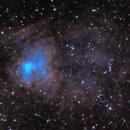 NGC 1491 - The Fossil Footprint (WIP #2),                                Crazy Owl Photogr...