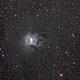 NGC 7023,                                zoyah