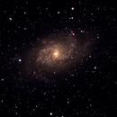 M33, Triangulum Galaxy,                                Vincent Giranda