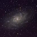M33 Triangulum,                                TomH