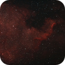 NGC 7000 North America Nebula,                                Jaroslaw Przybyla
