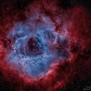 The Rosette Nebula,                                Israel Gil Andani