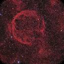 CTB1 RGB+HA+S2,                                Mark Holbrook