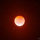 Moon total eclipse,                                Samuel Müller