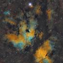 IC1318 (Butterfly nebula in Sadr region),                                YoungDae-Kim