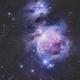 M42- ORION NEBULA,                                Andres Noriega
