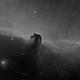 Horsehead Nebula - Ha,                                Thomas Richter