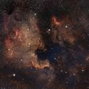 North America & Pelican Nebulae,                                Daniel Erickson