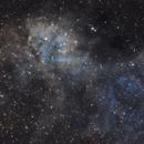 The Lion Nebula - Sh2-132,                                Crazy Owl Photography
