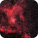 Heart Nebula,                                Ian