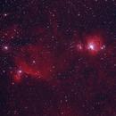 Orion's Belt and Sword Color,                                Neil Winston
