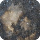 NGC7000 and IC5070 Bicolor Palette,                                Christopher Schementi