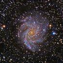 Fireworks Galaxy (LHaRGB),                                KuriousGeorge