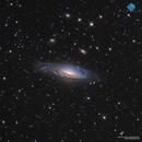 NGC 7331 Spiral Galaxy,                                Francesco di Biase