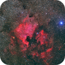 North America and Pelican Nebulae,                                S. Stirling