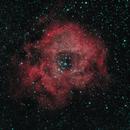 Rosette Nebula,                                kyle.allen