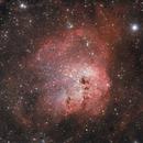 Tadpole Nebula,                                Simas Šatkauskas