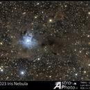 NGC 7023 Iris Nebula,                                Andre van der Hoeven