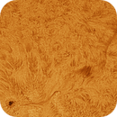 Sunspot and Filament Time-Lapse (38MB),                                Chuck's Astrophot...