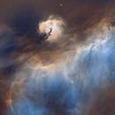 Seagull Nebula Rev 3,                                Astropierce