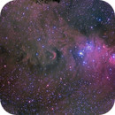NGC 2264 - This time in HaLRGB   ** Now With Rev-2 and Rev-3 Images included**,                                Fernando
