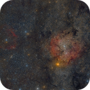 Widefield of IC 1396, dark nebulae and Sh2 family,                                Guillermo Gonzalez