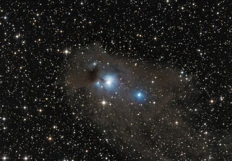 Be146 Dark Nebula in Centaurus,                                TWFowler