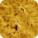 SunSpot 2635, Feb 13th 2017,                                Martin (Marty) Wise