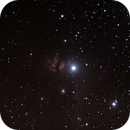 Flame and Horsehead nebulae,                                andyboy1970