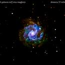 ngc3184 galassia nell'orsa maggiore                                              distanza 35 milioni  A.L.,                                Carlo Colombo