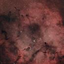 Elephant Trunk (IC 1396),                                Dmitrii