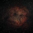 Elephant Trunk Nebula,                                AstroDinsk