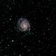 M101,                                Thilo Frey