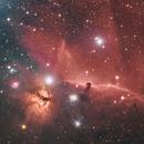 Horsehead and Flame nebula,                                jon nicholls
