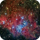 NGC 2264 - The Christmas Tree Cluster,                                AstroAdventures